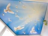 Натяжной потолок с голубями